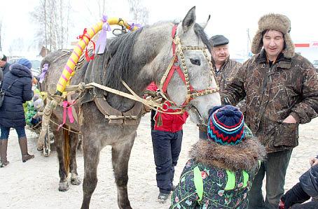 Лошадка по кличке Азира собрала вокруг себя много желающих прокатиться на ней.