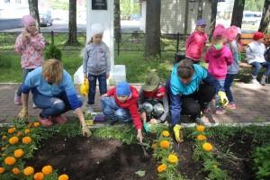 Во время высадки цветов.