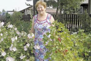 Валентина Васильевна занимается и цветоводством: флоксы, хоста, георгины и многие другие цветы радуют окружающих яркими красками.