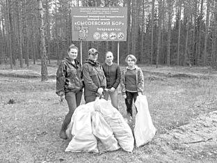 Волонтеры потрудились плодотворно, теперь дорожки Сысоевского бора стали намного чище.