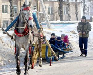 Все желающие могли прокатиться на лошади, запряженной в сани.