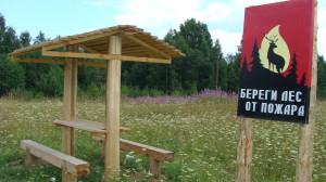 На природе нельзя мусорить и необходимо беречь лес от огня!